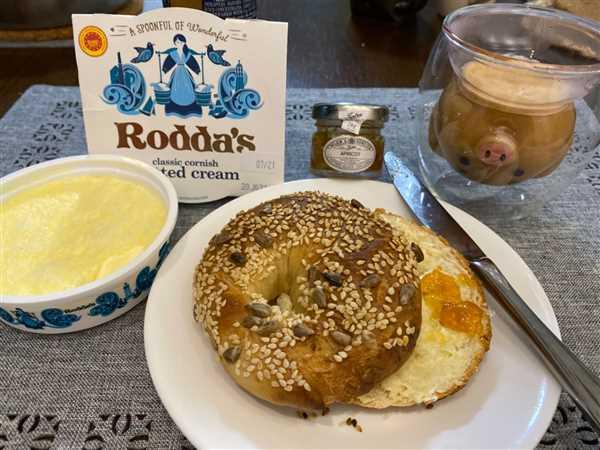 Gourmet Grocery By OurChoice  Rodda's Cornish Clotted Cream 113g Review