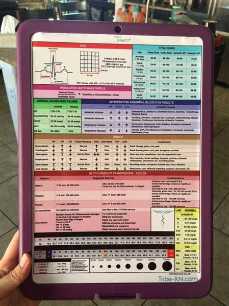 Tribe RN Nursing Clipboard with Storage and Clinical Cheat Sheet Review