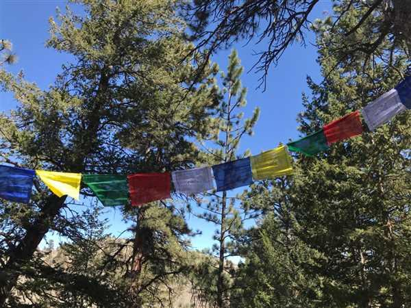 Kristy Gungler verified customer review of Tiny Medicine Buddha Prayer Flags