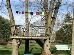 Patricia W. verified customer review of Rainbow Bridge Prayer Flags