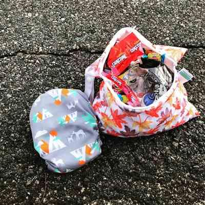 Green Mountain Diapers Thirsties Mini Wet Bag Review
