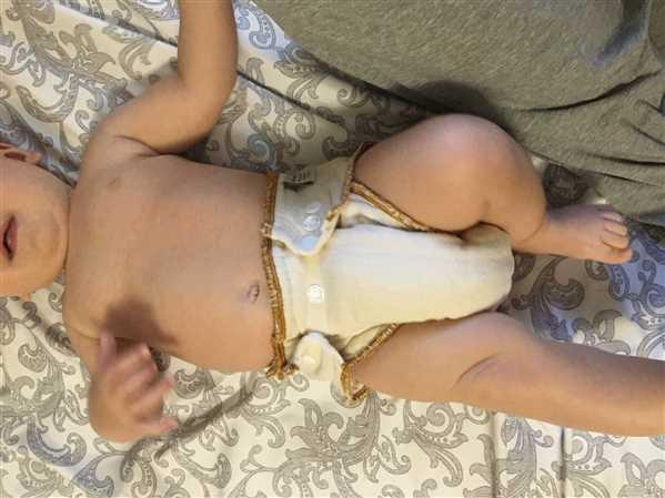 Elizabeth verified customer review of Cloth-eez Workhorse Fitted Diaper Made Of Organic Cotton - No Closure