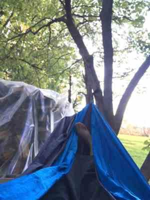 Abigail M. verified customer review of Double Lightweight Camping Hammock & Tree Straps