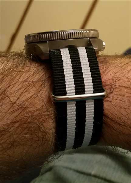 The Sydney Strap Co. THE ZEBRA Review
