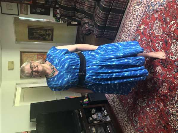 Svaha USA Dolphins and Whales Parks Dress Review