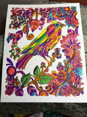 Laurel L. verified customer review of Colorful Expressions Illustrated By Terbit Basuki