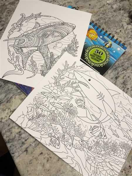 ColorIt Coloring Books Colors Of The Ocean Illustrated By Stevan Kasih Review