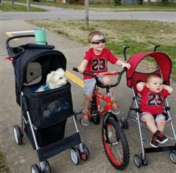 Pam M. verified customer review of 4 Wheel Walk Dog Stroller With Folding Carrier