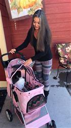 Tamara H. verified customer review of 4 Wheel Walk Dog Stroller With Folding Carrier