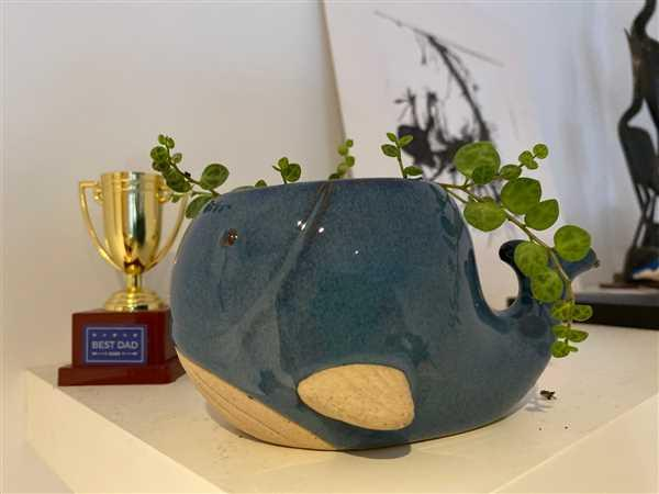 The Chic Nest Whale Planter Review