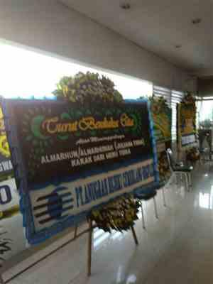 Jerry Hal verified customer review of Consolantibus Jabodetabek