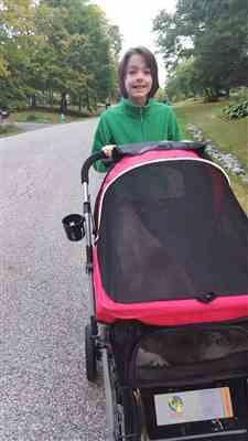 Diane Davis verified customer review of HPZ™ PET ROVER Premium Stroller for Small/Medium/Large Dogs, Cats and Pets (Red)
