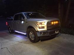 Douglas S. verified customer review of 2017 - 2020 F150 RAPTOR LED Running Board/ Area Premium Lights