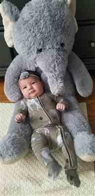 Melissa Price verified customer review of Rocco Elephant Footie Zippered One Piece