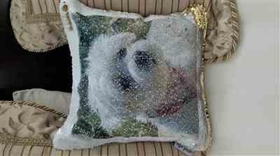 LISA BOURNE verified customer review of PupPillow: Print Your Pup's photo on Reversible Sequin Pillow Cover!