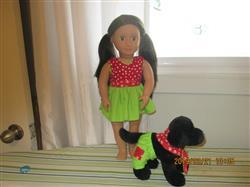 Shari D. verified customer review of Fifi and Fido 18 Doll Pet Pattern