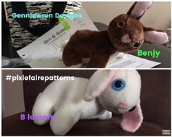Wendy U. verified customer review of Benjy & Blossom Bunny Pets 18 Doll Pet Pattern