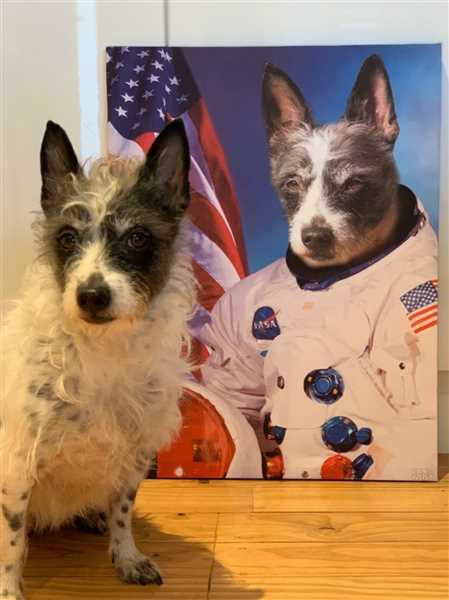 Brooke Ericson verified customer review of Astrodog Pet Canvas