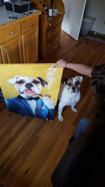 Danny Wallace verified customer review of Elite Pet Canvas