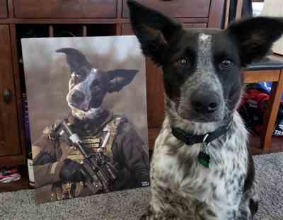William Scavezze verified customer review of Marine Special Force  Pet Canvas