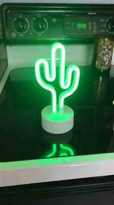 Tara M. verified customer review of Cactus Mini LED Light