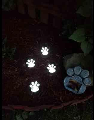 Jane verified customer review of Solar-Powered Paw Print Lights