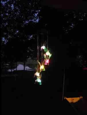 Debra verified customer review of Solar-Powered Dangling Hummingbird Lights