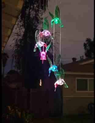 anita verified customer review of Solar-Powered Dangling Hummingbird Lights