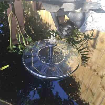 Kellie  verified customer review of Solar-Powered Easy Bird Fountain Kit - Great Addition to Your Garden!