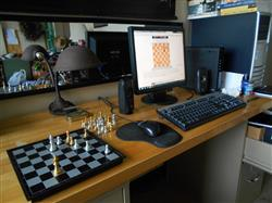 Fred M. verified customer review of Travel Magnetic Chess Set  - 9.7'