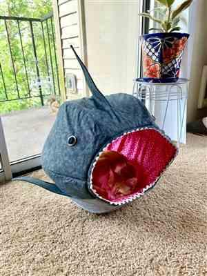 Yuna C. verified customer review of Great White Shark Cat Ball Cat Bed