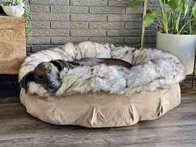 Anjela S. verified customer review of Faux Fur Shag Puff® Orthopedic Luxury Dog Bed