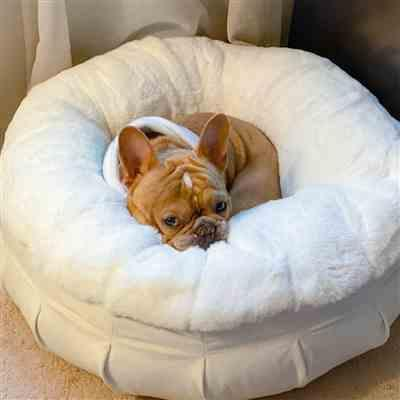 Courtney Walker verified customer review of Ruby Puff® Orthopedic Luxury Dog Bed