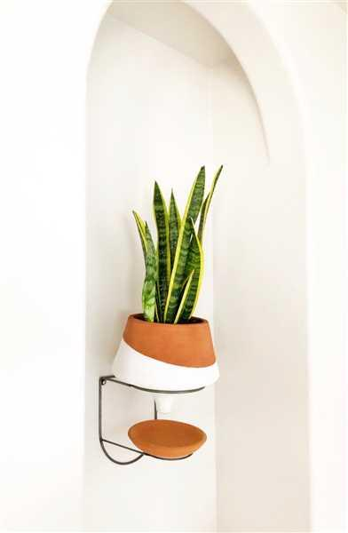 Patricia Castillo verified customer review of The Holistic Habitat Wall Mount Funnel Planter-White