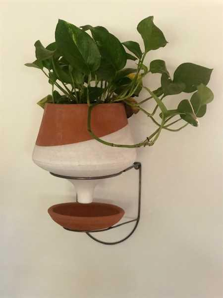 Leah verified customer review of The Holistic Habitat Wall Mount Funnel Planter-White