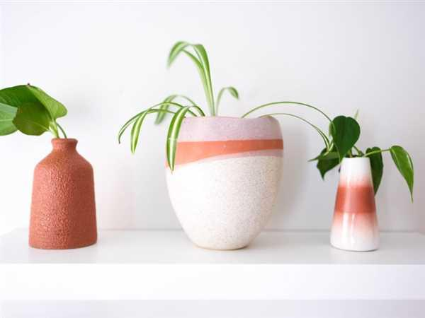 Holistic Habitat  Terracotta Color Stoneware Vase Review