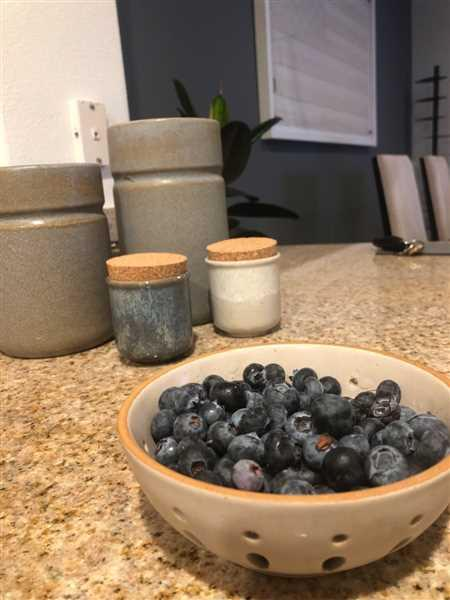 Holistic Habitat  Earth Tone Stoneware Berry Bowls Review