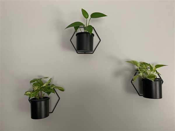 desiree cook verified customer review of Matte Black Hex Metal Hanging Planter