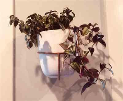 Katrina Ferrara verified customer review of White Washed Clay Bell Planter in Wall Mount Copper Holder
