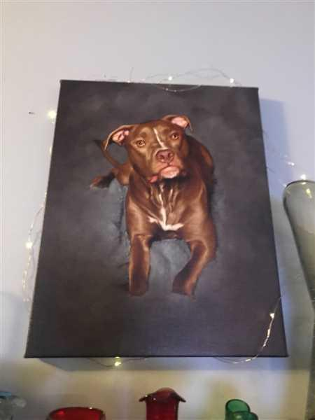 Michele McCurry verified customer review of Custom Pet Portrait