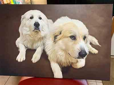 Melissa Creger verified customer review of Custom Pet Portrait