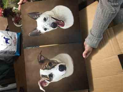 Edward Copus verified customer review of Hand Drawn Portrait - 2 Dogs