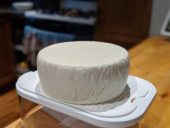 New England Cheesemaking Supply Company Home Cheese Making Review