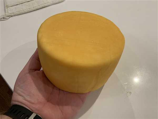 Trent verified customer review of Cheese Coloring