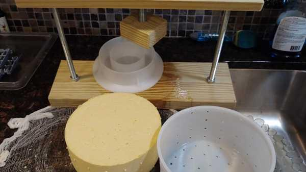 Alex Hunter verified customer review of Tomme Cheese Mold
