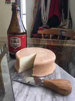 Cynthia Johnston verified customer review of Washed Rind Monks Cheese Making Recipe