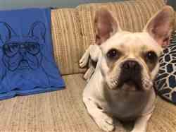 Ronda S. verified customer review of Franco the French Bulldog - Unisex Crewneck