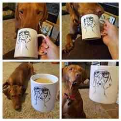 Stephanie E. verified customer review of Sawyer the Vizsla - Mug
