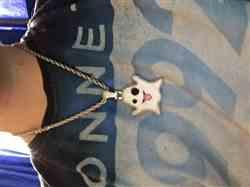 Devon verified customer review of ICED Ghost Pendant in White Gold