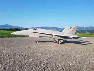 Markus B. verified customer review of Freewing F/A-18C Hornet Base Gray 90mm EDF Jet - PNP